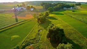 豪华的绿色领域和农场 免版税图库摄影