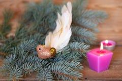 豪华装饰圣诞节小鸟 免版税库存照片