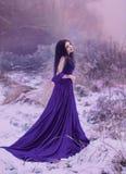 豪华豪华的紫色礼服的夫人 库存照片
