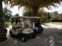 豪华高尔夫球手段 免版税库存照片