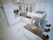 豪华L形的厨房 库存例证