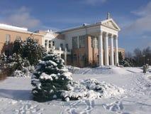 豪宅在冬天 免版税库存图片