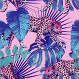 豹子和热带植物无缝的背景 图库摄影