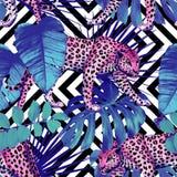 豹子和热带植物,几何黑色 免版税库存图片