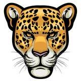 豹子头 免版税库存图片