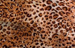 豹子样式水平纹理的背景 免版税库存图片