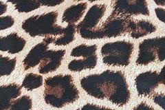 豹子样式 库存照片