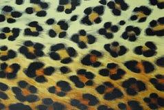 豹子模式 免版税库存照片