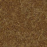 豹子皮肤纹理 库存图片