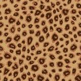 豹子皮肤 向量例证