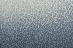 豹子野生动物样式背景或纹理,墙纸概念蓝灰色过滤器 免版税库存照片
