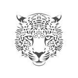 豹子顶头例证 颜色一 库存图片