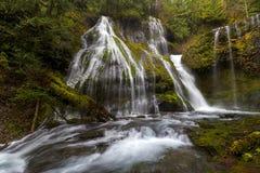 豹小河在吉福德Pinchot国家森林 库存照片