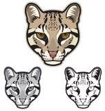 豹猫面孔 免版税库存图片
