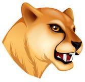 豹的头 库存图片