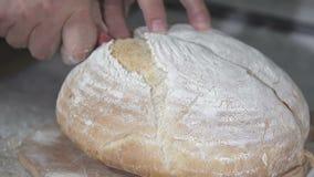 贝克切热的新鲜面包 慢的行动 股票视频