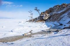 贝加尔湖冰湖熔化的冬天 库存图片