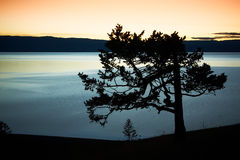 贝加尔湖拒绝湖横向晚上 免版税库存照片