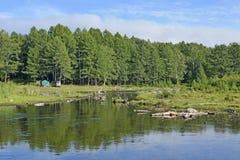 贝加尔湖森林和附庸国  免版税库存照片