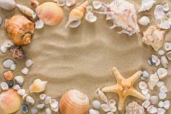 贝壳和小卵石背景,自然海滨石头 库存照片