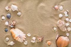 贝壳和小卵石背景,自然海滨石头 免版税库存图片