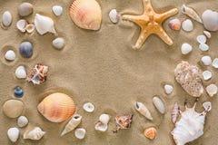 贝壳和小卵石背景,自然海滨石头 免版税图库摄影