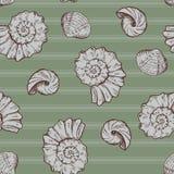 贝壳和条纹在无缝绿色的背景 库存照片