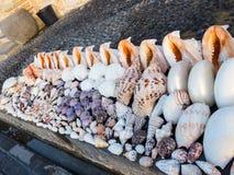 贝壳待售在库塔巴厘岛 免版税库存图片