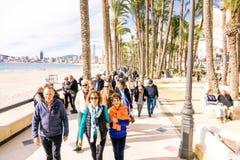 贝尼多姆,西班牙- 2018年1月14日:走和享受假日的人们在贝尼多姆,肋前缘布朗卡,西班牙 免版税库存照片