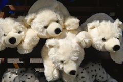 负担极性被充塞的玩具 免版税库存图片
