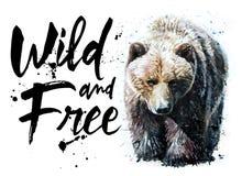 负担T恤杉的水彩食肉动物的动物野生生物,狂放和自由野生生物印刷品 图库摄影