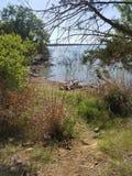 负鼠王国湖 库存照片