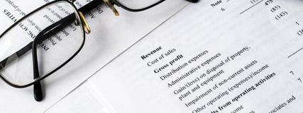财务分析-收入报告,经营计划 全景的横幅 库存图片