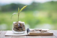 财政植物生长在节约金钱的硬币玻璃瓶子的和事务的投资,概念,创新、成长和金钱 免版税库存照片