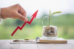 财政植物生长在节约金钱的硬币玻璃瓶子的和事务的投资,概念,创新、成长和金钱 免版税图库摄影