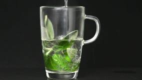 贤哲、植物和茶准备 影视素材