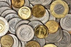 货币波兰 免版税图库摄影