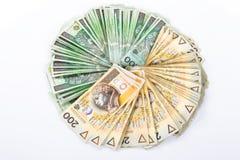 货币纸波兰 库存照片