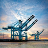 货物海港。 在端口的起重机。 日落。 免版税库存图片