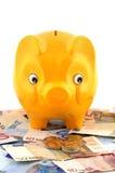 贪心银行的欧元 库存图片