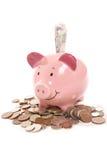 贪心银行英国货币的货币 免版税库存图片