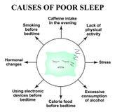 贫寒睡眠的原因 失眠 世界睡眠天 睡觉枕头 Infographics 在被隔绝的背景的传染媒介例证 库存例证