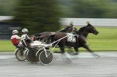 购买权接近的上马具的赛马比赛 库存图片