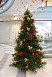 购物中心购物结构树xmas 免版税库存图片