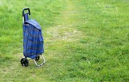 购物台车袋子 免版税图库摄影