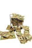 购物车被充塞的货币购物 库存图片