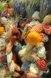 购物车装载了丰富多样的秋天收获 免版税库存图片