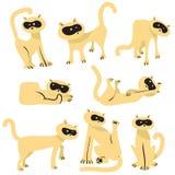 贴纸设置与滑稽的猫 与家养的宠物的汇集我 库存照片