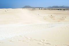 费埃特文图拉岛沙丘 库存照片
