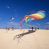 费埃特文图拉岛,西班牙- 11月10:访客享受在31th国际风筝节日飞行风筝美好的显示, 库存照片